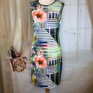 Bisou Bisou Sheath Dress